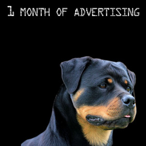 rottweiler advertising