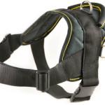 rottweiler nylon dog harness
