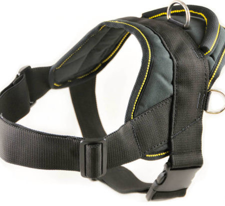 rottweiler nylon dog harness