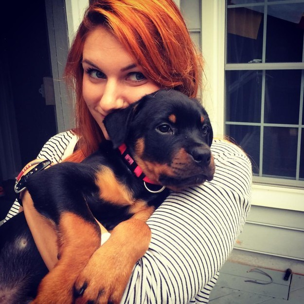 rottweiler puppy with girl - 30 Reasons why Rottweilers are Good Pets