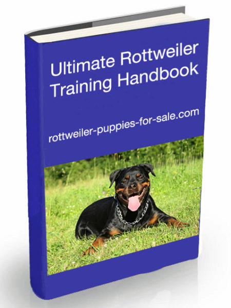 rottweiler training handbook