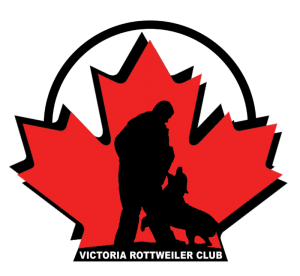 victoria rottweiler club-rottweiler events